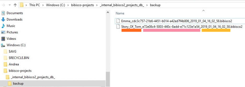 Backup directory structure bibisco blog | useful resources by your novel writing software